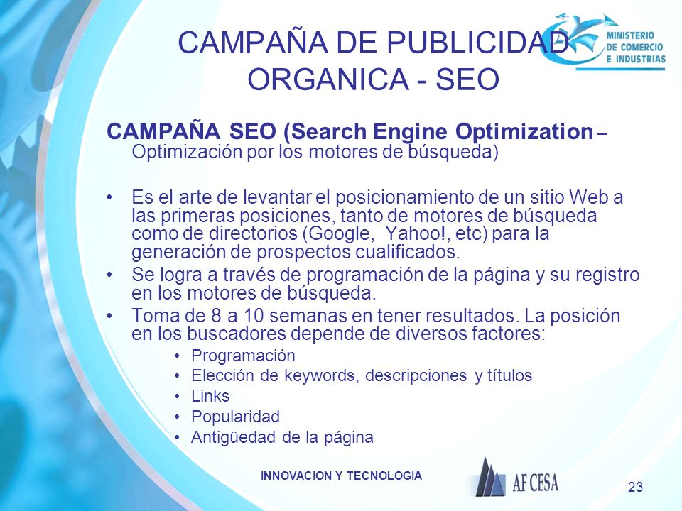 CAMPAÑA DE PUBLICIDAD ORGANICA - SEO