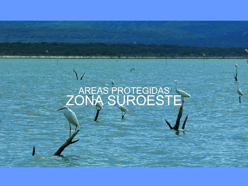 AREAS PROTEGIDAS ZONA SUROESTE