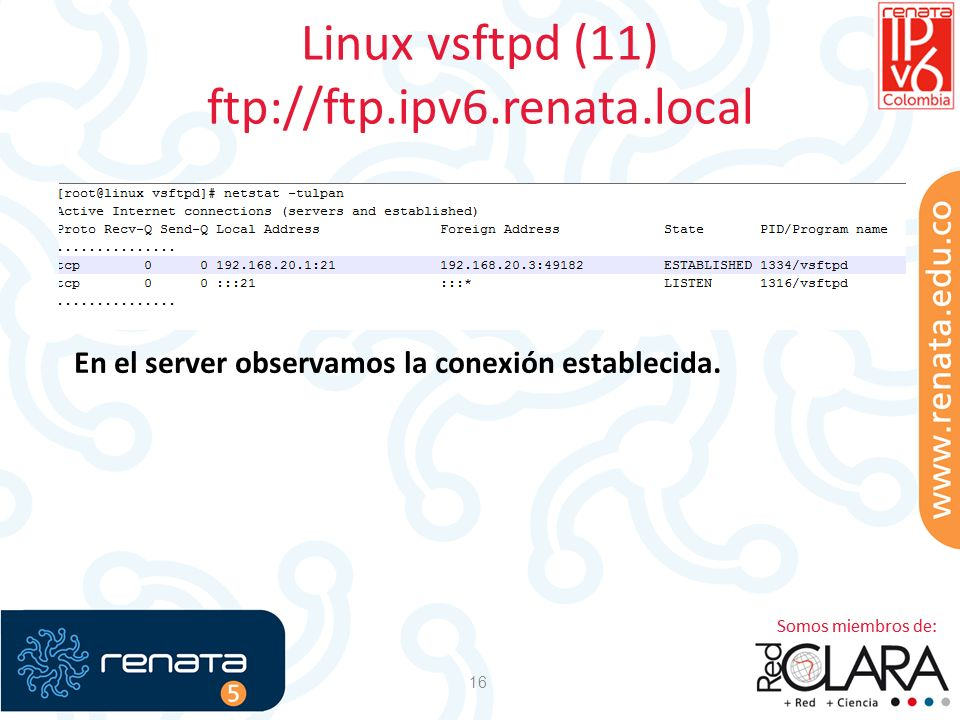Linux vsftpd (11) ftp://ftp.ipv6.renata.local