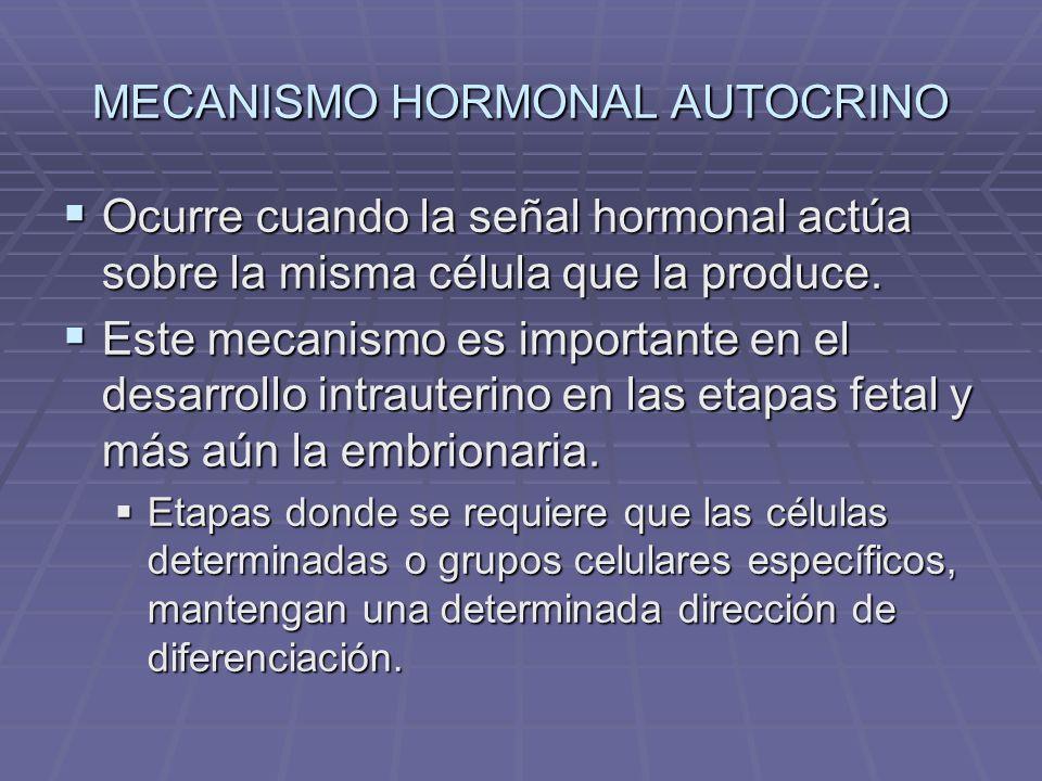 MECANISMO HORMONAL AUTOCRINO