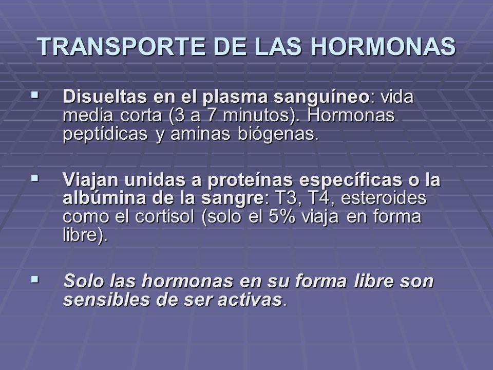 TRANSPORTE DE LAS HORMONAS