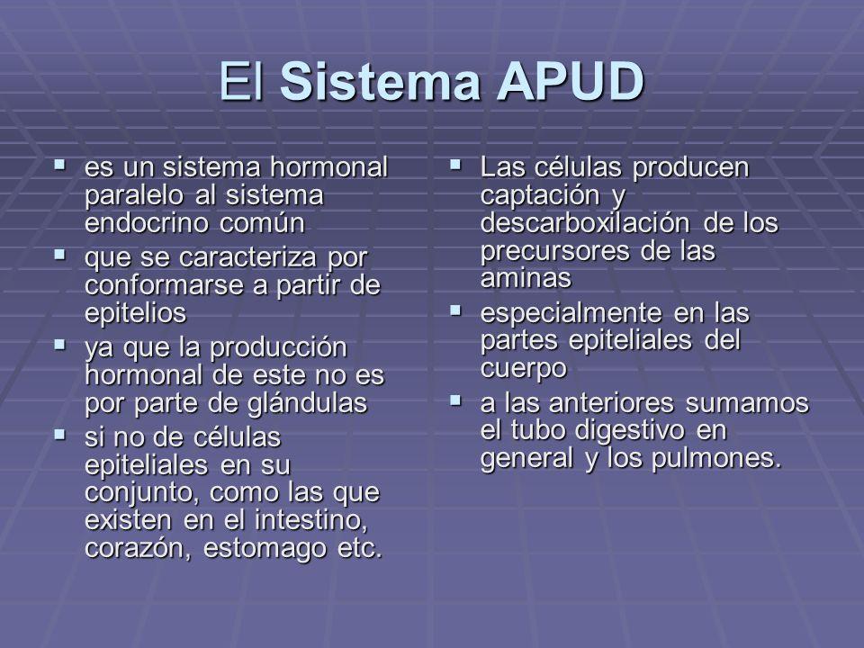 El Sistema APUD es un sistema hormonal paralelo al sistema endocrino común. que se caracteriza por conformarse a partir de epitelios.