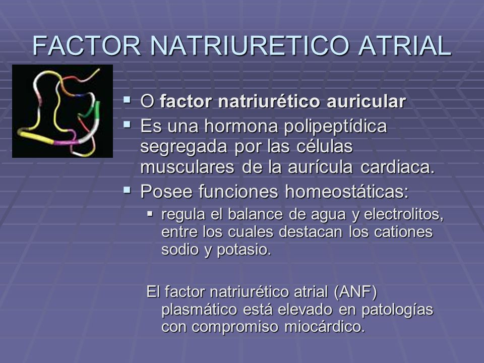 FACTOR NATRIURETICO ATRIAL
