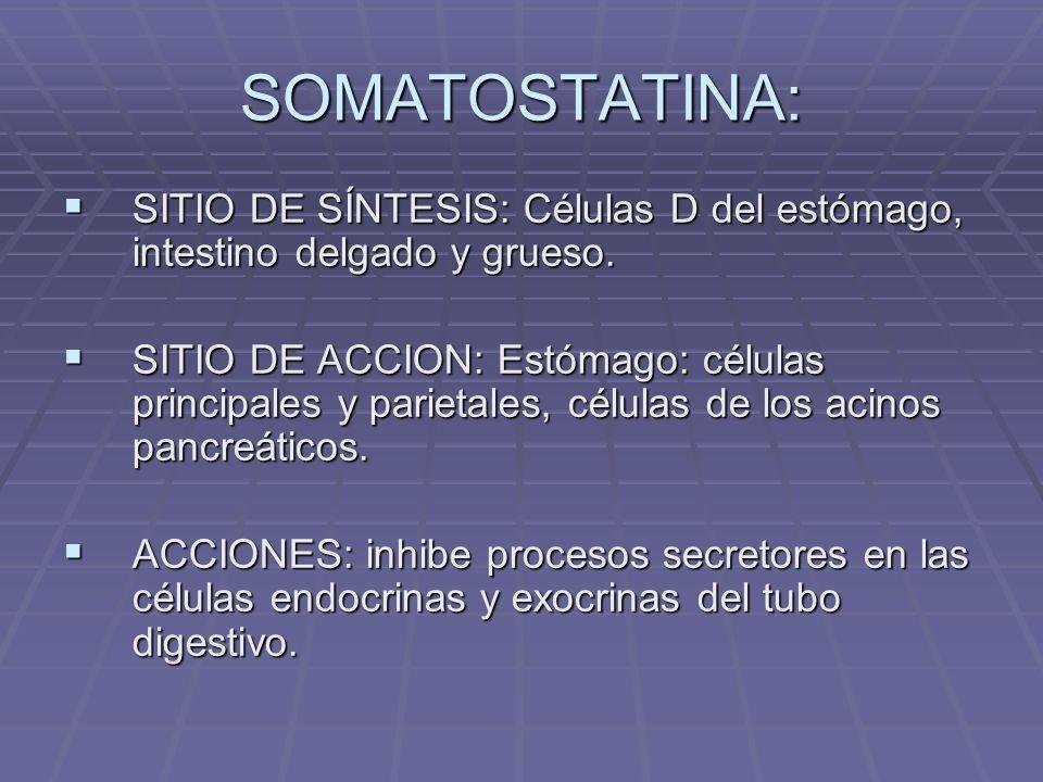 SOMATOSTATINA: SITIO DE SÍNTESIS: Células D del estómago, intestino delgado y grueso.