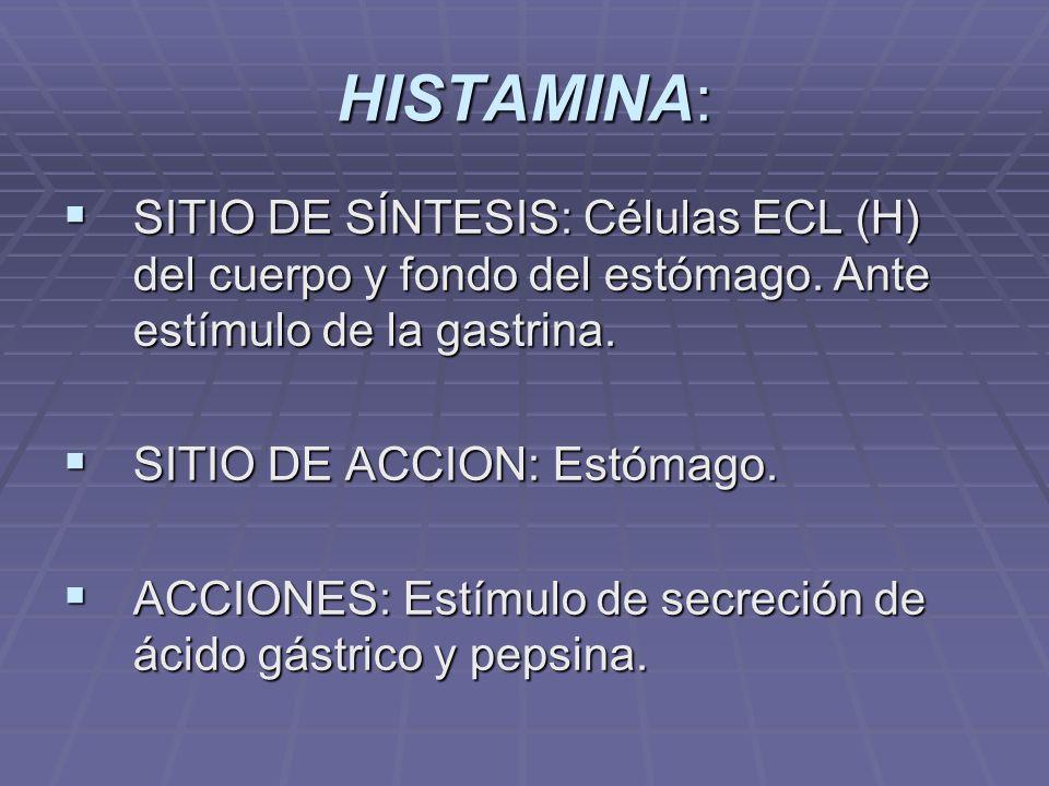 HISTAMINA: SITIO DE SÍNTESIS: Células ECL (H) del cuerpo y fondo del estómago. Ante estímulo de la gastrina.