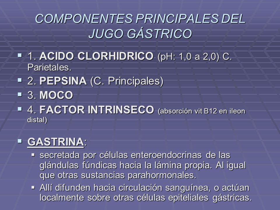 COMPONENTES PRINCIPALES DEL JUGO GÁSTRICO