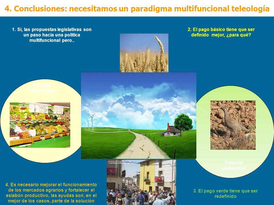 4. Conclusiones: necesitamos un paradigma multifuncional teleología
