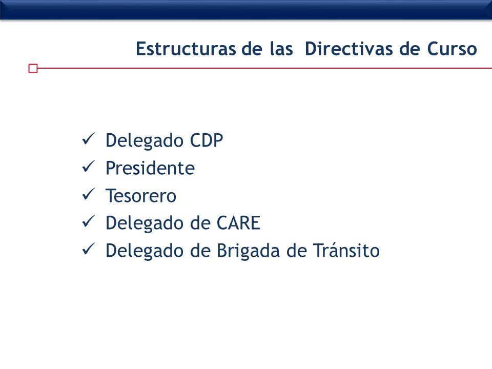 Estructuras de las Directivas de Curso