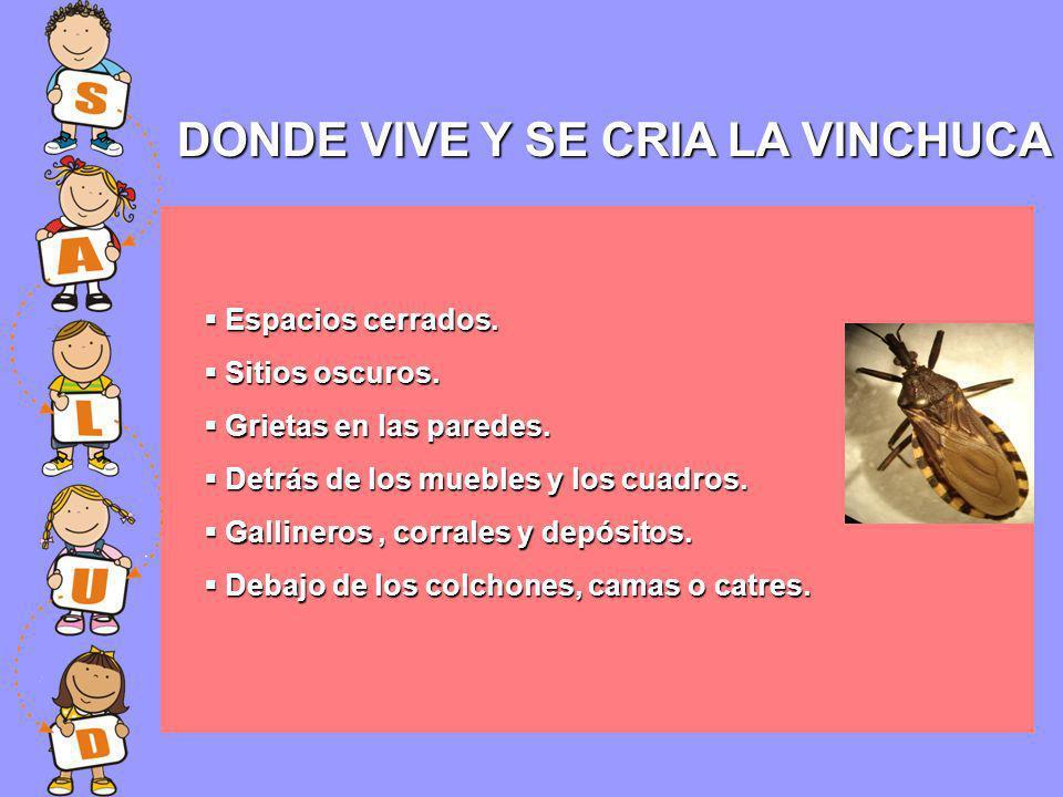 DONDE VIVE Y SE CRIA LA VINCHUCA