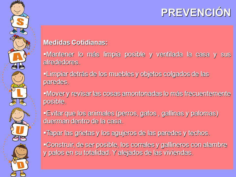 PREVENCIÓN Medidas Cotidianas: