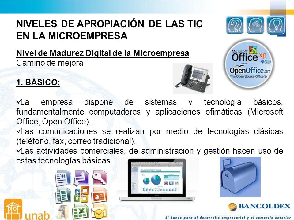 NIVELES DE APROPIACIÓN DE LAS TIC EN LA MICROEMPRESA
