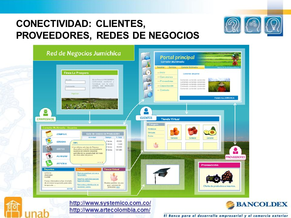CONECTIVIDAD: CLIENTES, PROVEEDORES, REDES DE NEGOCIOS