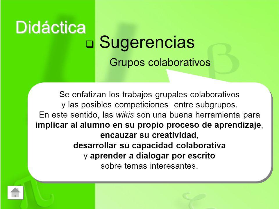 Didáctica Sugerencias Grupos colaborativos