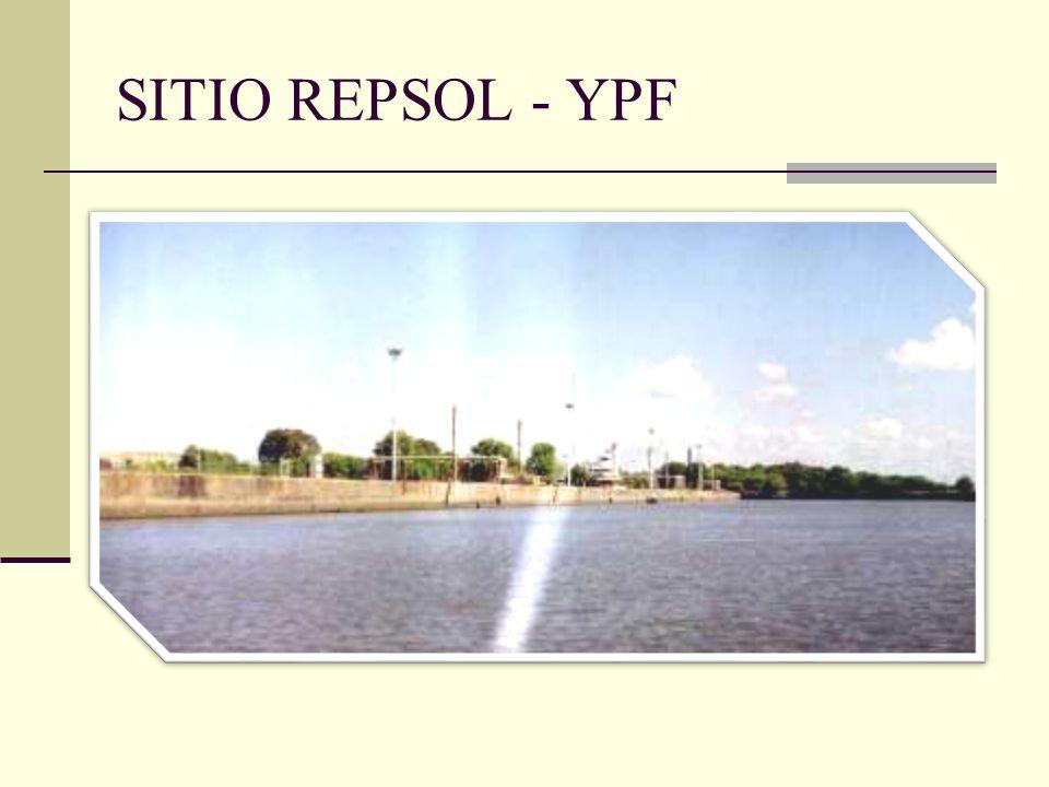 SITIO REPSOL - YPF