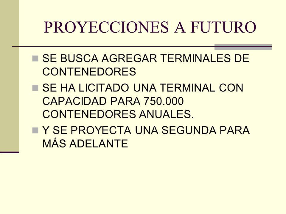 PROYECCIONES A FUTURO SE BUSCA AGREGAR TERMINALES DE CONTENEDORES
