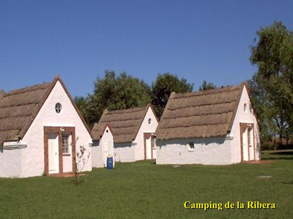 Camping de la Ribera