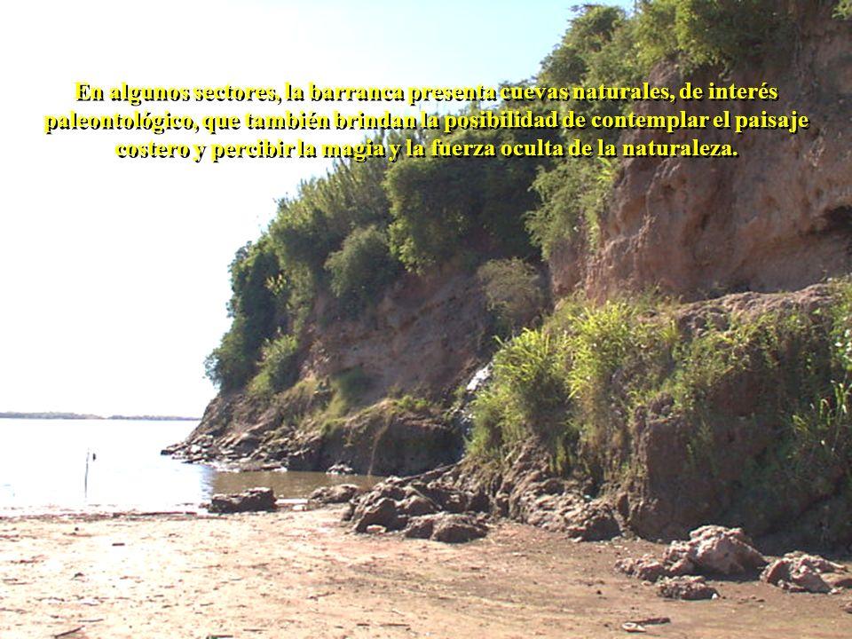 En algunos sectores, la barranca presenta cuevas naturales, de interés paleontológico, que también brindan la posibilidad de contemplar el paisaje costero y percibir la magia y la fuerza oculta de la naturaleza.