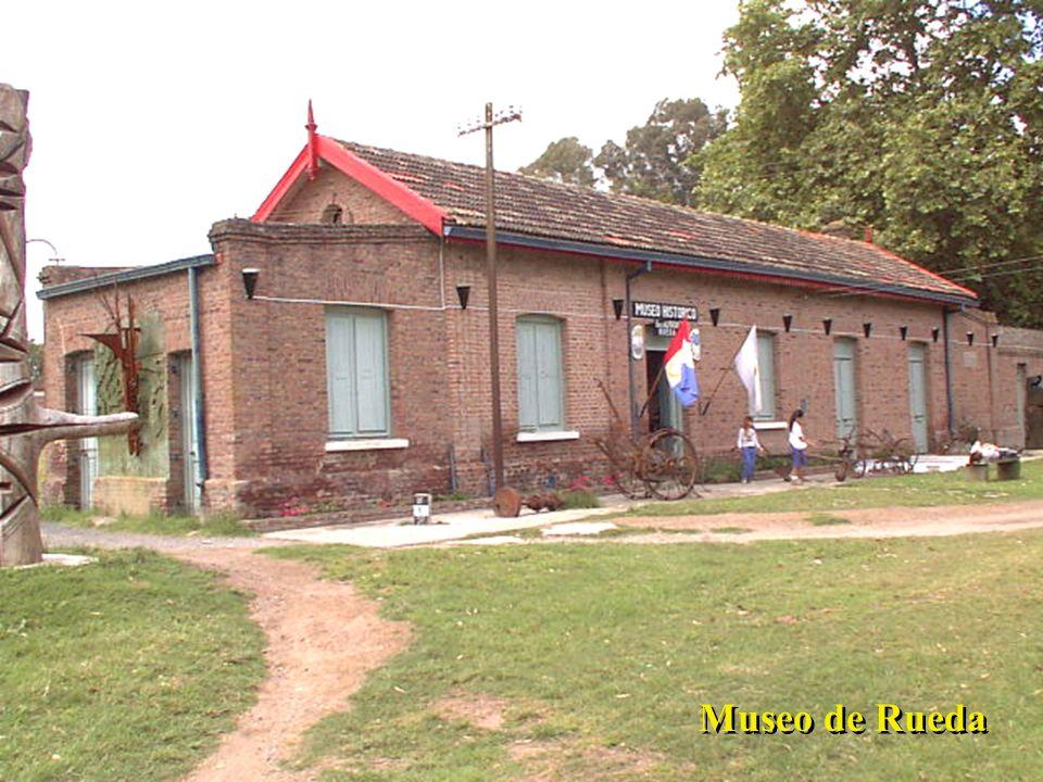 Museo de Rueda
