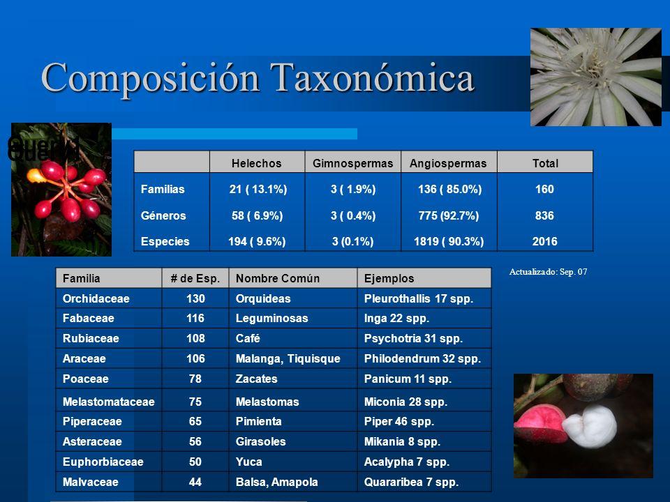 Composición Taxonómica