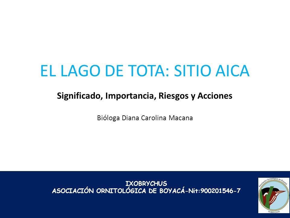 EL LAGO DE TOTA: SITIO AICA