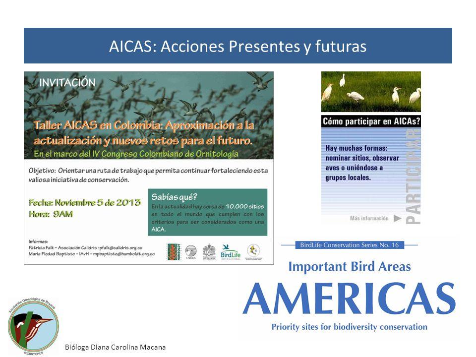 AICAS: Acciones Presentes y futuras