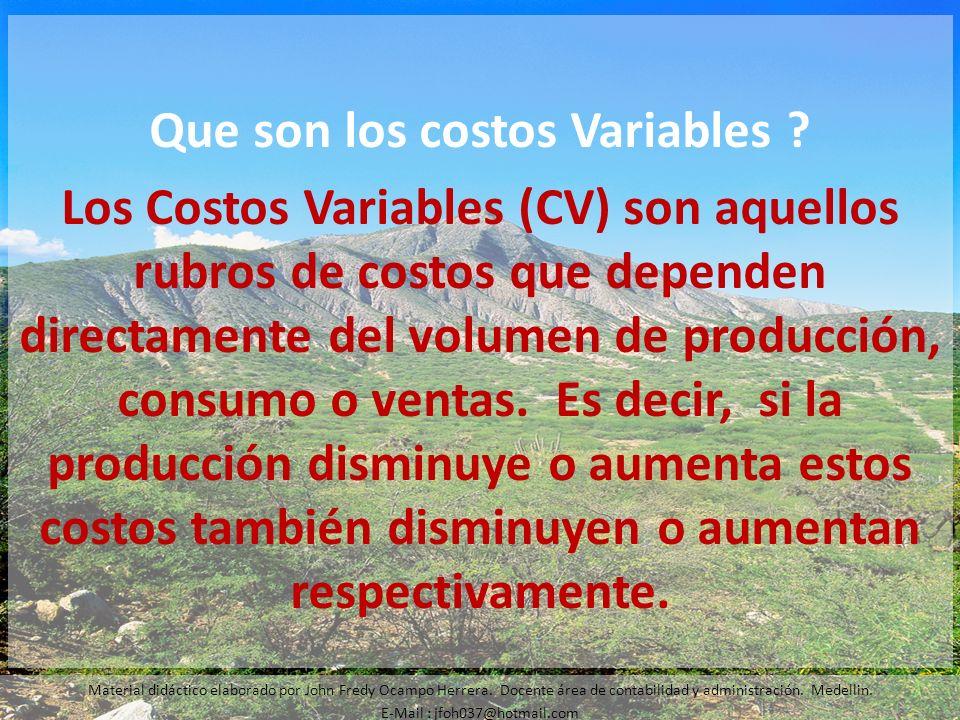 Que son los costos Variables