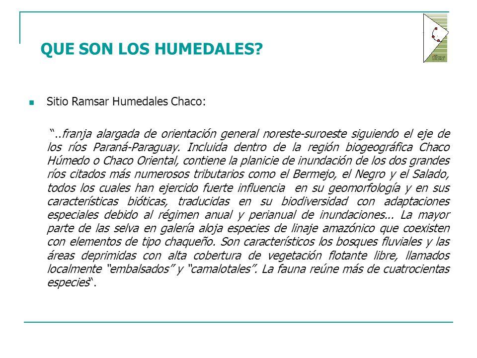 QUE SON LOS HUMEDALES Sitio Ramsar Humedales Chaco: