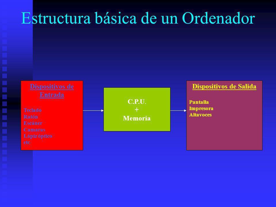 Estructura básica de un Ordenador