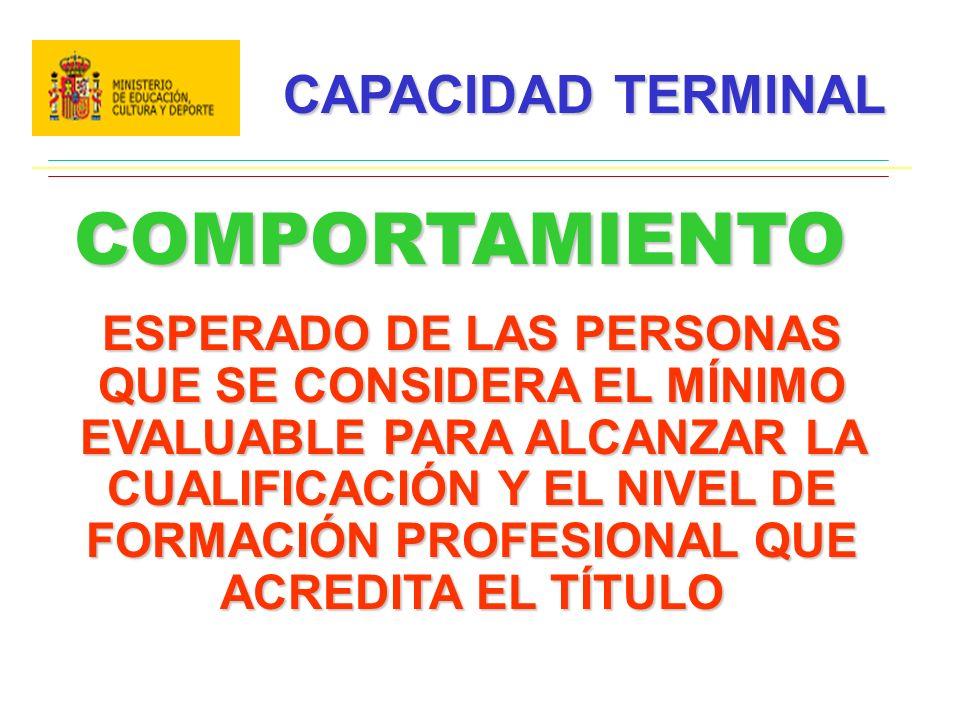 COMPORTAMIENTO CAPACIDAD TERMINAL