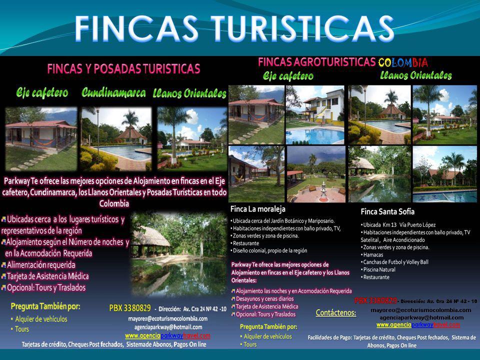 FINCAS TURISTICAS