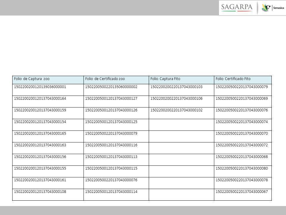 Folio de Captura zooFolio de Certificado zoo. Folio Captura Fito. Folio Certificado Fito. 1502200200120139036000001.