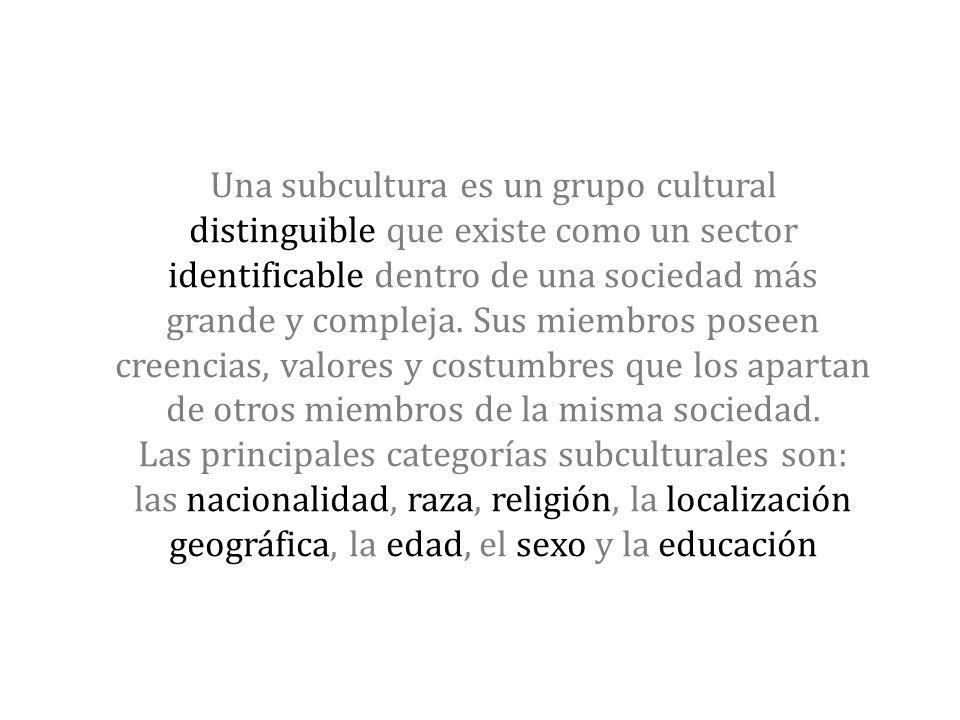 Una subcultura es un grupo cultural distinguible que existe como un sector identificable dentro de una sociedad más grande y compleja.