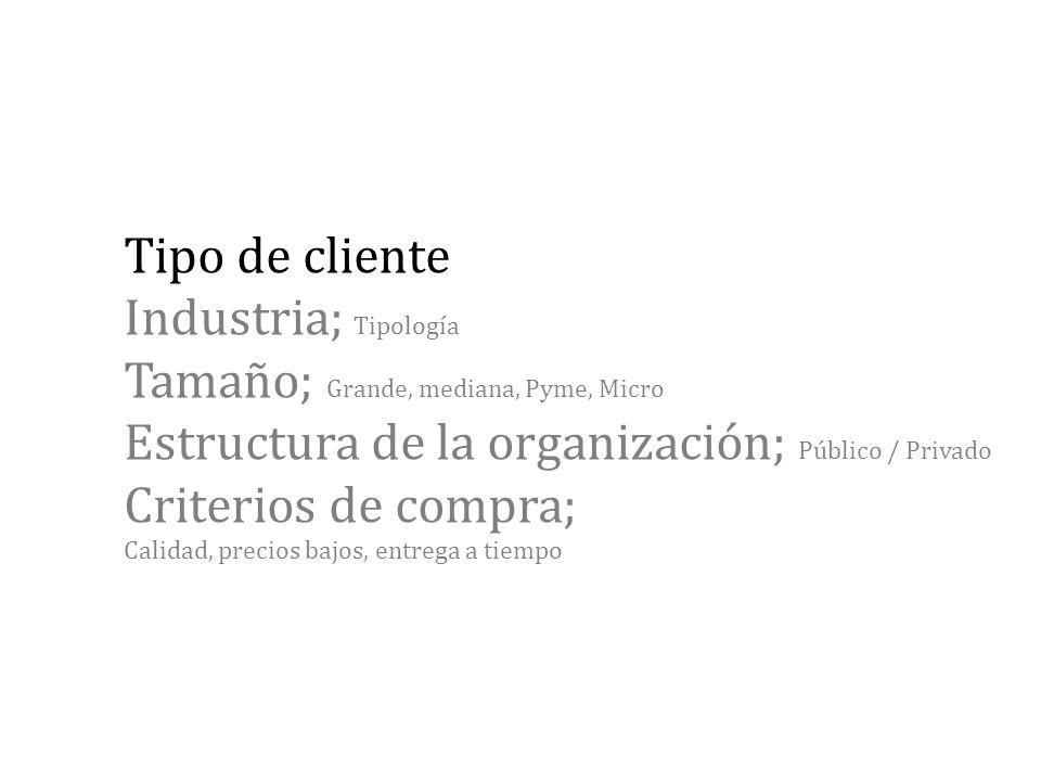 Tipo de cliente Industria; Tipología Tamaño; Grande, mediana, Pyme, Micro Estructura de la organización; Público / Privado Criterios de compra; Calidad, precios bajos, entrega a tiempo