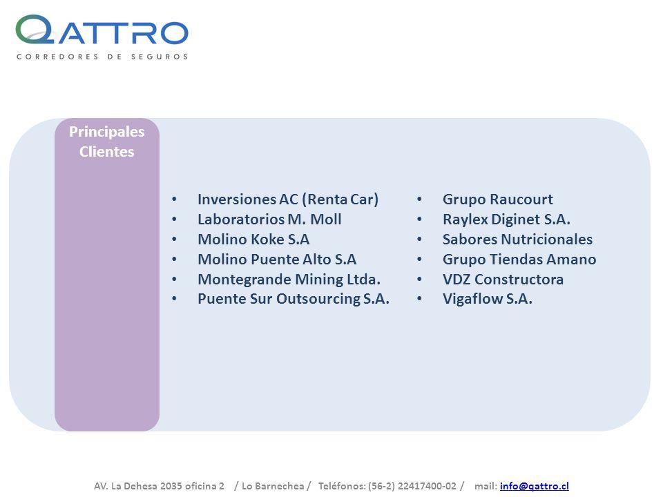 Principales Clientes. Inversiones AC (Renta Car) Laboratorios M. Moll. Molino Koke S.A. Molino Puente Alto S.A.