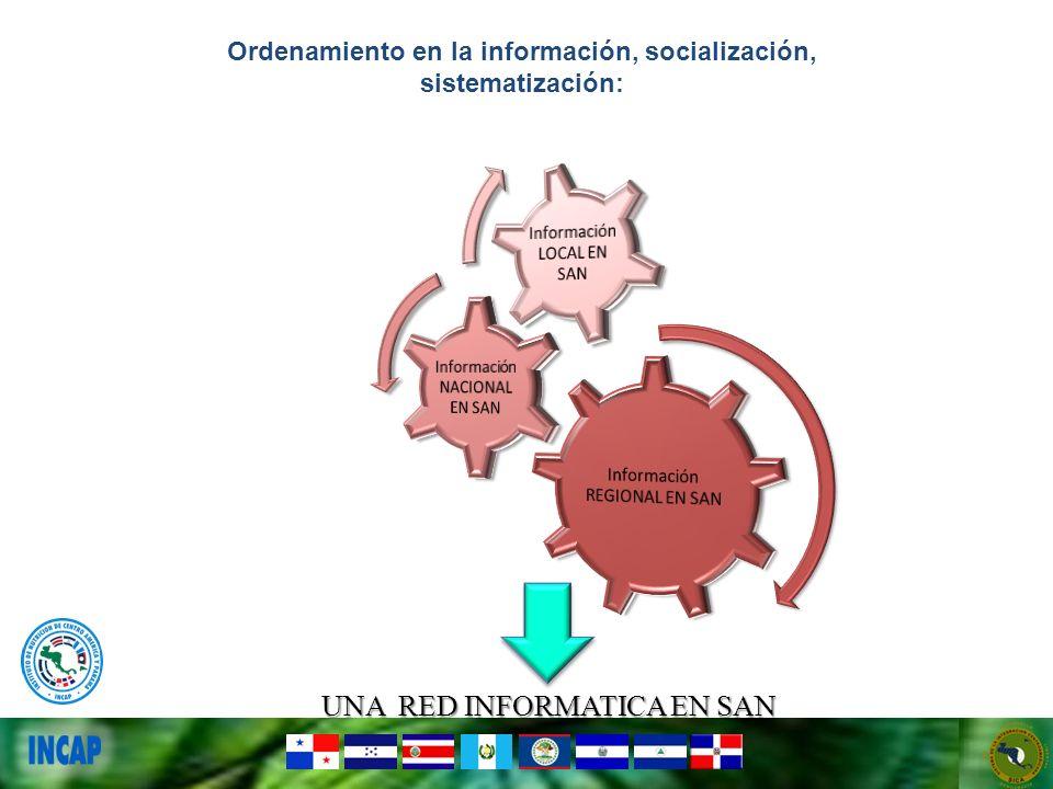 Ordenamiento en la información, socialización, sistematización: