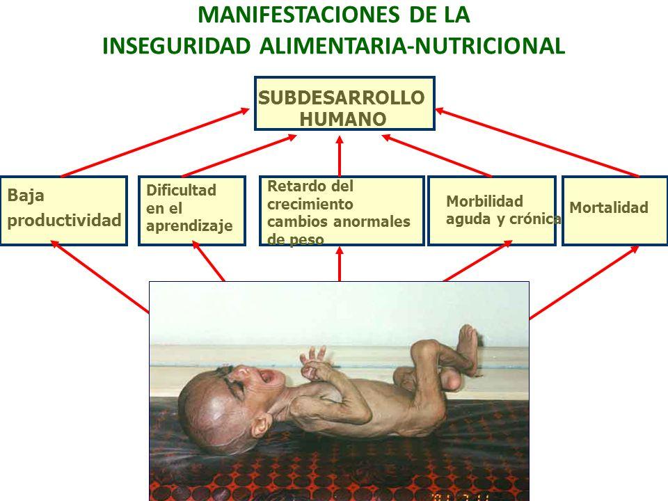 MANIFESTACIONES DE LA INSEGURIDAD ALIMENTARIA-NUTRICIONAL