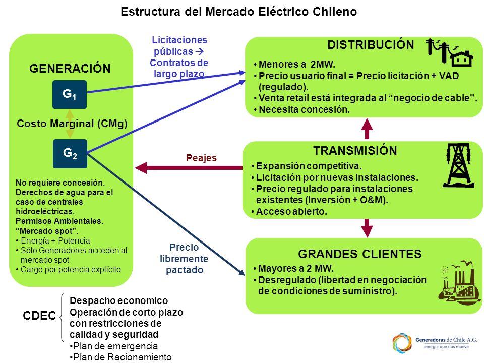 Estructura del Mercado Eléctrico Chileno
