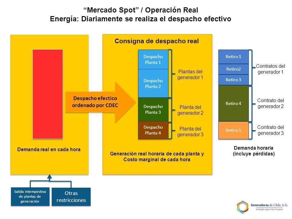 Mercado Spot / Operación Real