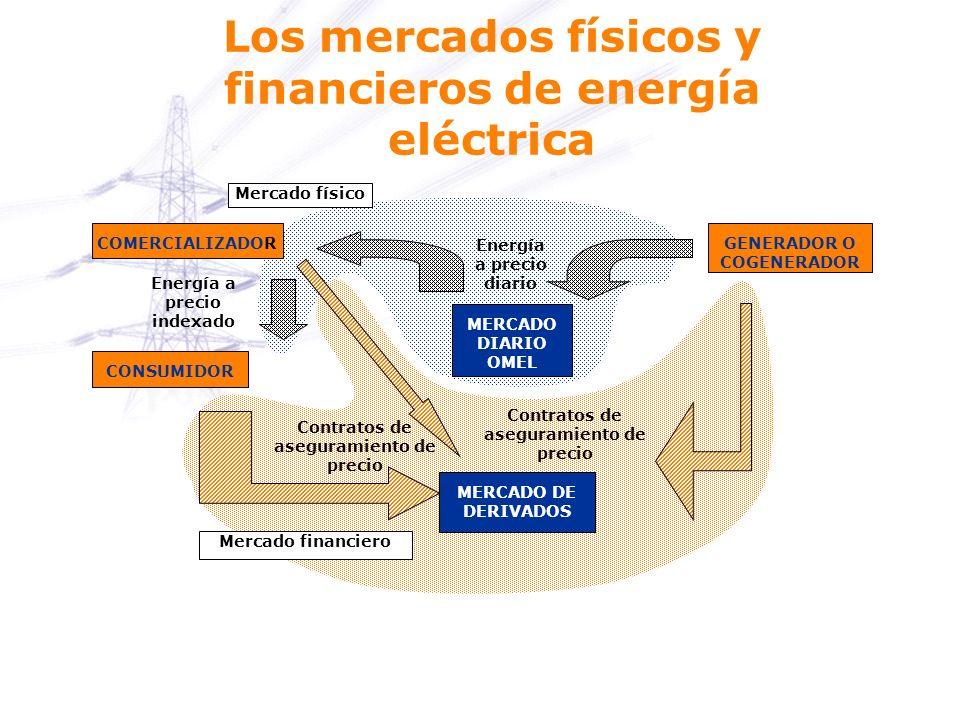 Los mercados físicos y financieros de energía eléctrica