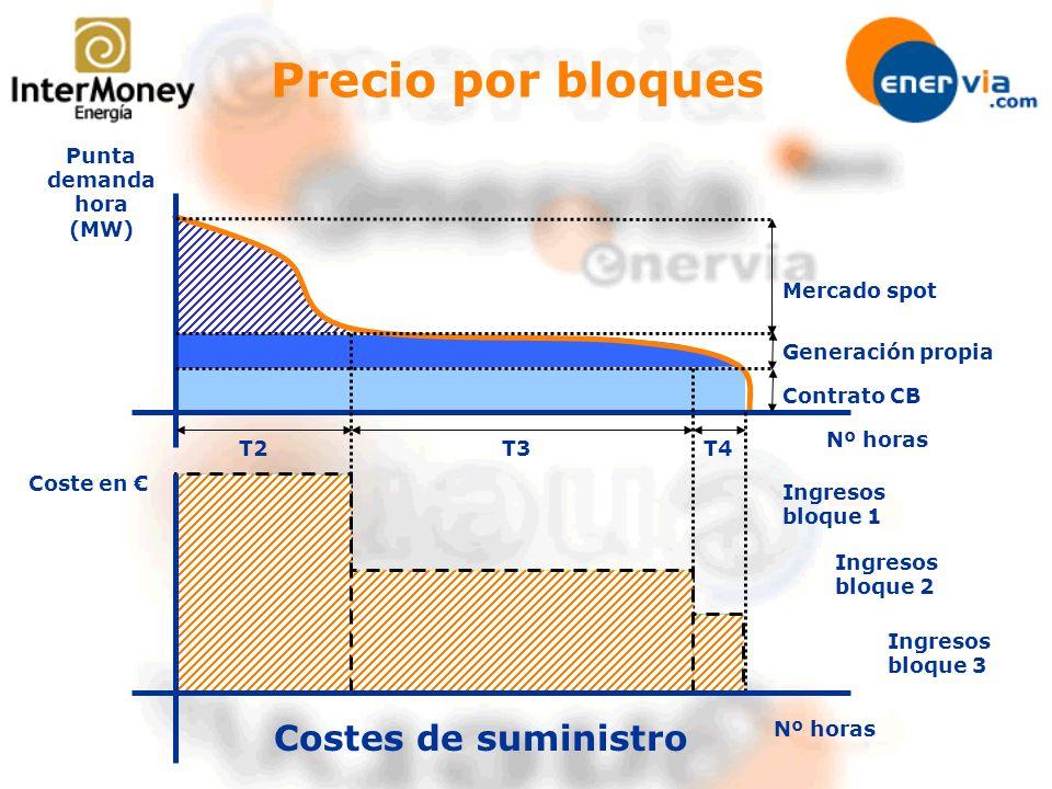 Punta demanda hora (MW)