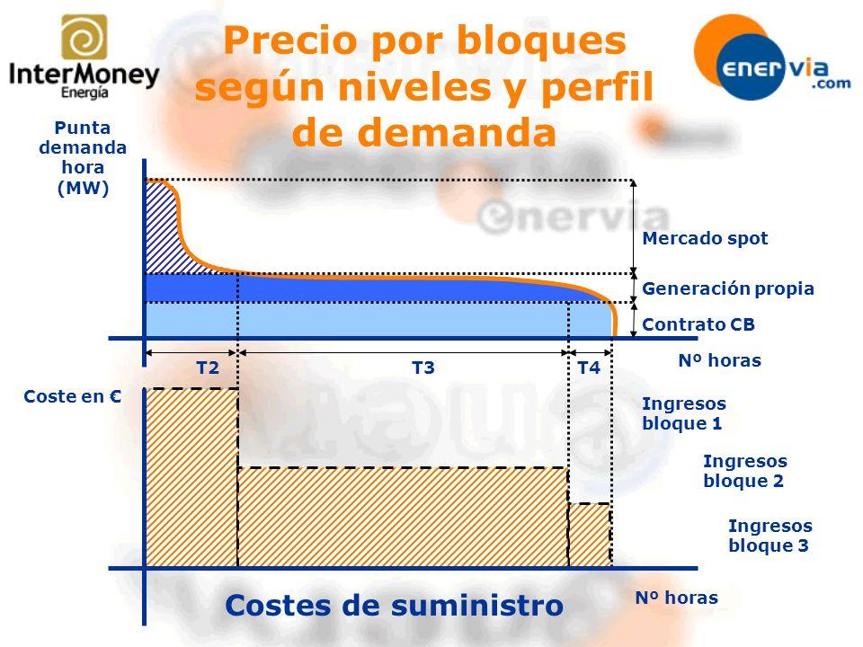 Precio por bloques según niveles y perfil de demanda