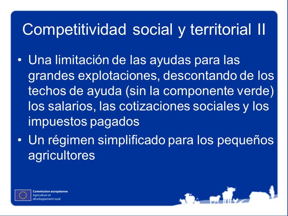 Competitividad social y territorial II