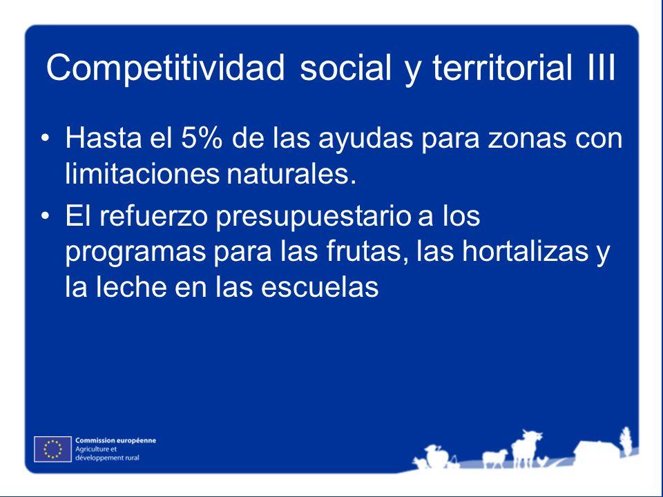 Competitividad social y territorial III