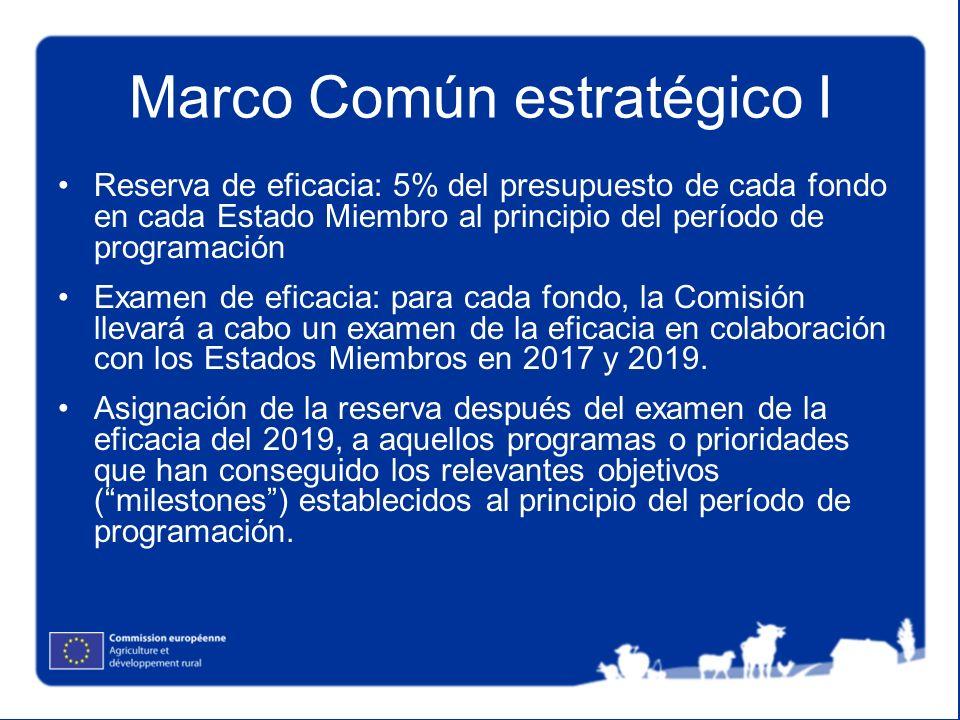 Marco Común estratégico I