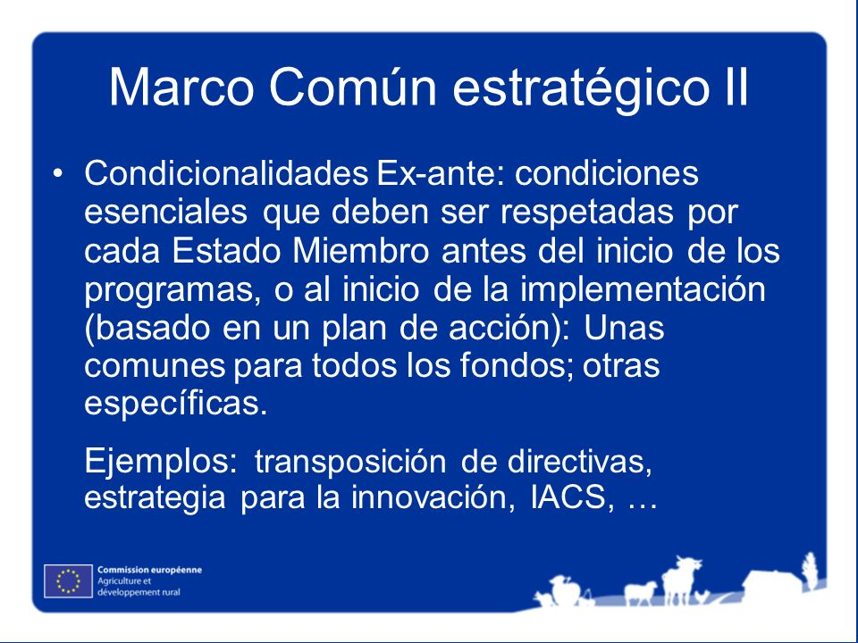 Marco Común estratégico II