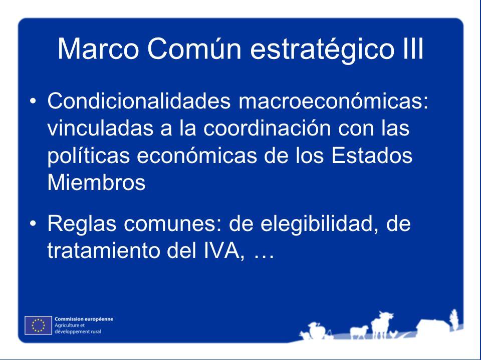 Marco Común estratégico III