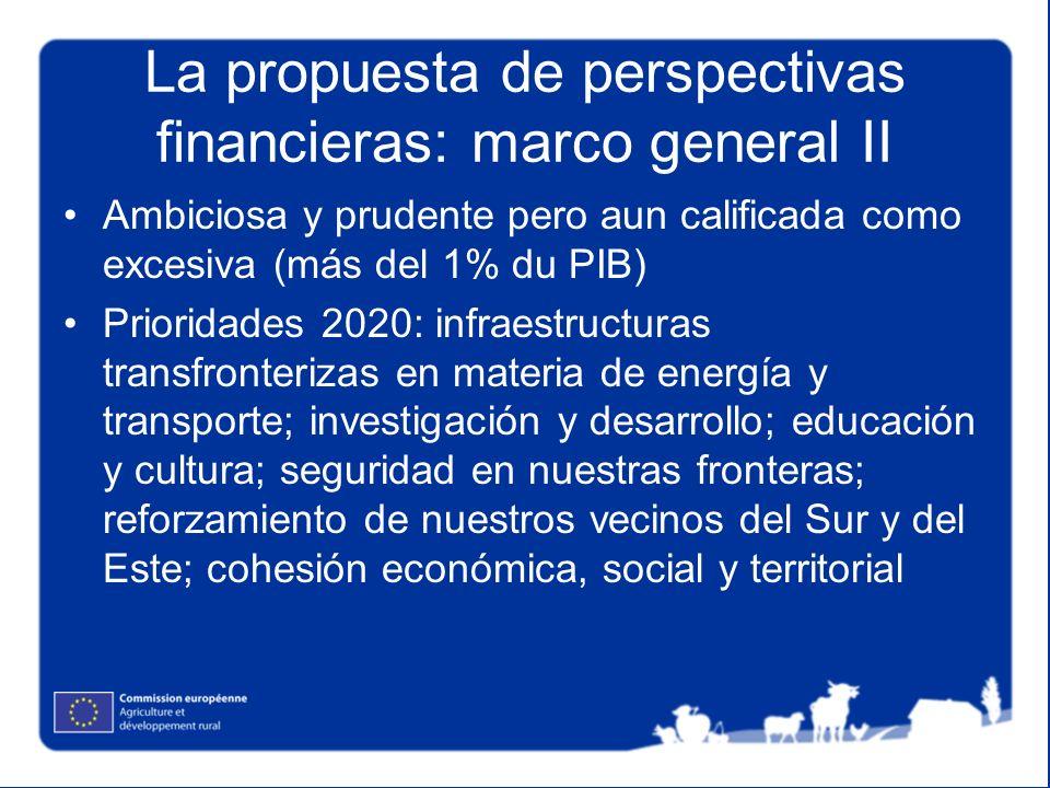 La propuesta de perspectivas financieras: marco general II