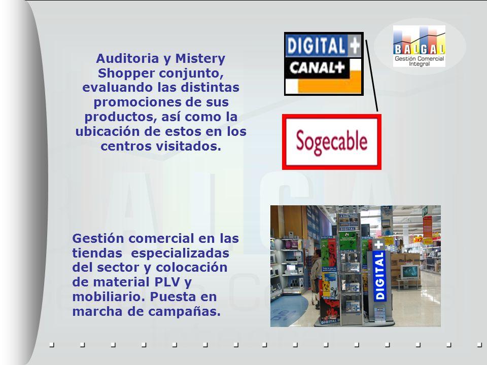 Auditoria y Mistery Shopper conjunto, evaluando las distintas promociones de sus productos, así como la ubicación de estos en los centros visitados.