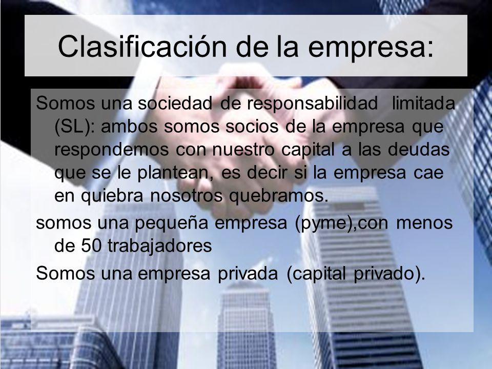 Clasificación de la empresa: