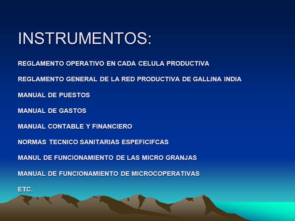 INSTRUMENTOS: REGLAMENTO OPERATIVO EN CADA CELULA PRODUCTIVA REGLAMENTO GENERAL DE LA RED PRODUCTIVA DE GALLINA INDIA MANUAL DE PUESTOS MANUAL DE GASTOS MANUAL CONTABLE Y FINANCIERO NORMAS TECNICO SANITARIAS ESPEFICIFCAS MANUL DE FUNCIONAMIENTO DE LAS MICRO GRANJAS MANUAL DE FUNCIONAMIENTO DE MICROCOPERATIVAS ETC.